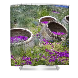 Desert Flowers Shower Curtain by Joan Carroll
