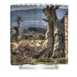 Deserted Shower Curtain by Heiko Koehrer-Wagner