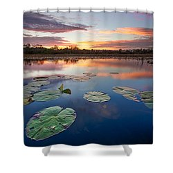 Everglades At Sunset Shower Curtain by Debra and Dave Vanderlaan