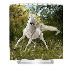 Graceful Shower Curtain by Kate Black