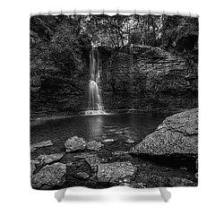 Hayden Falls Shower Curtain by James Dean