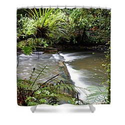 Jungle Stream  Shower Curtain by Les Cunliffe