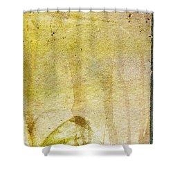 Music Of My Life Shower Curtain by Brett Pfister