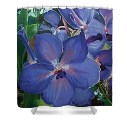 Orchids Shower Curtain by Donna Tuten