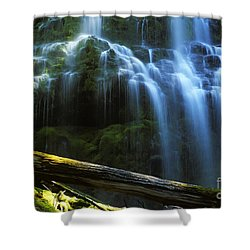 Proxy Falls Oregon Shower Curtain by Bob Christopher