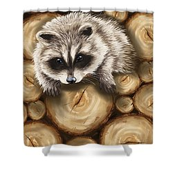 Raccoon Shower Curtain by Veronica Minozzi