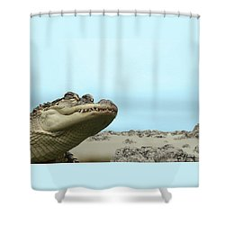 See You Later Alligator Shower Curtain by Ellen Henneke