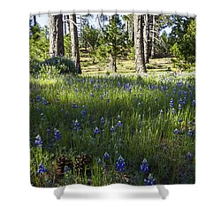 Simple Pleasures Shower Curtain by Lynn Bauer