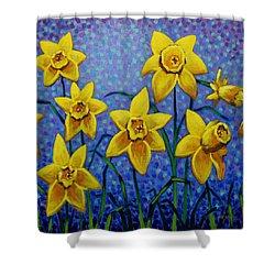 Spring Daffodils Shower Curtain by John  Nolan