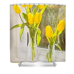 Spring Tulips Shower Curtain by Amanda Elwell