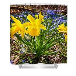 Spring Wildflowers Shower Curtain by Elena Elisseeva