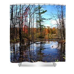 The Beautiful Fall Shower Curtain by Paul Ge