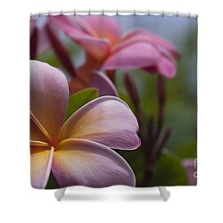 The Garden Of Dreams Shower Curtain by Sharon Mau