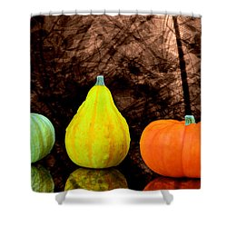 Three Small Pumpkins  Shower Curtain by Toppart Sweden