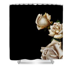 Trio Shower Curtain by Cheryl Young