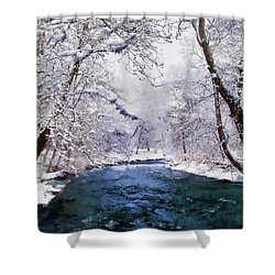 Winter White Shower Curtain by Jessica Jenney