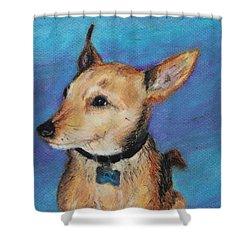Zack Shower Curtain by Jeanne Fischer