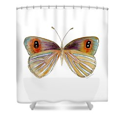 24 Argyrophenga Butterfly Shower Curtain by Amy Kirkpatrick