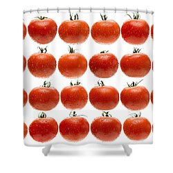 24 Tomatoes Shower Curtain by Steve Gadomski