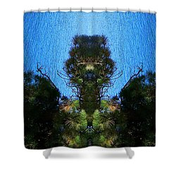 Abstract 50 Shower Curtain by J D Owen