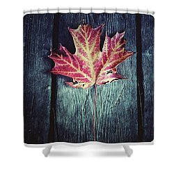 Maple Leaf Shower Curtain by Natasha Marco