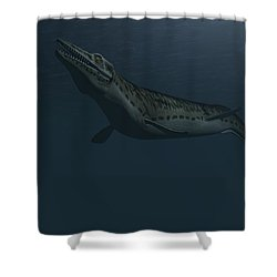 Mosasaur Swimming In Prehistoric Waters Shower Curtain by Kostyantyn Ivanyshen