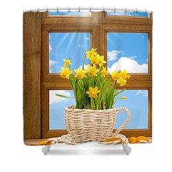 Spring Window Shower Curtain by Amanda Elwell