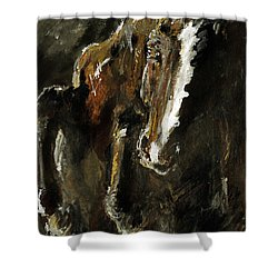 Wild Heart Shower Curtain by Angel  Tarantella