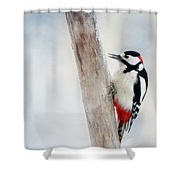 Woodpecker Shower Curtain by Heike Hultsch