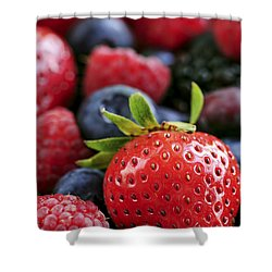 Assorted Fresh Berries Shower Curtain by Elena Elisseeva