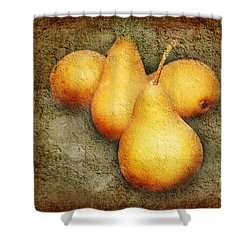 4 Little Pears Are We Shower Curtain by Andee Design