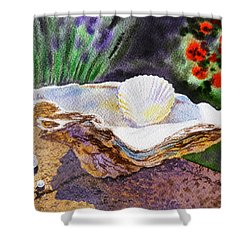 Sea Shell And Pearls Morning Light Shower Curtain by Irina Sztukowski