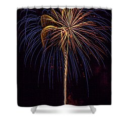 4th July #16 Shower Curtain by Diana Powell