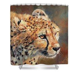 Cheetah Shower Curtain by David Stribbling
