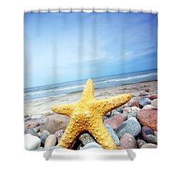 Starfish Shower Curtain by Michal Bednarek