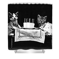 Frees Kittens, C1914 Shower Curtain by Granger