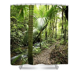 Jungle  Shower Curtain by Les Cunliffe