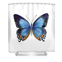 80 Imperial Blue Butterfly Shower Curtain by Amy Kirkpatrick