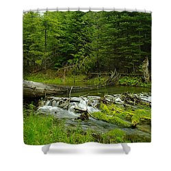 A Beaver Dam Overflowing Shower Curtain by Jeff Swan