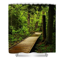A Boardwalk To Paradise Shower Curtain by Jeff Swan