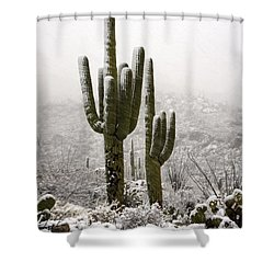 A Desert Southwest Snow Day  Shower Curtain by Saija  Lehtonen