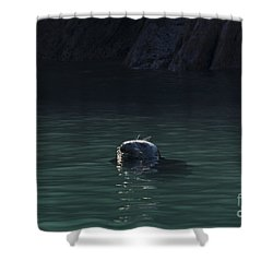 A Fine Day For A Swim Shower Curtain by Anne Gilbert