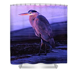 A Heron On The Moyie River Shower Curtain by Jeff Swan