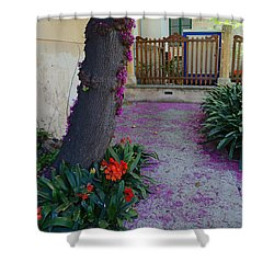 A Hint Of Spring Shower Curtain by Rene Triay Photography