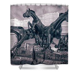 A Monument To Freedom II Shower Curtain by Joan Carroll