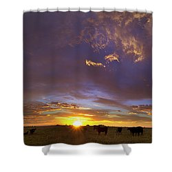 A New Dawn  Shower Curtain by Steven Reed