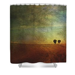 A Painterly Image Of Two Cows Walking Shower Curtain by Roberta Murray