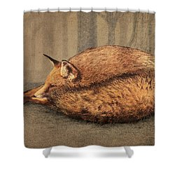 A Quiet Place Shower Curtain by Eric Fan