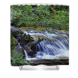 A Restful Stream Shower Curtain by Priscilla Burgers
