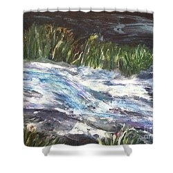A River Runs Through Shower Curtain by Sherry Harradence